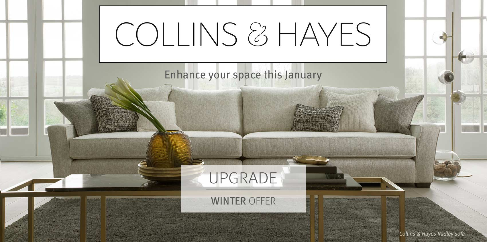 Collins & Hayes December offers