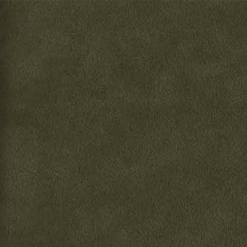 Alcantara Kiwi