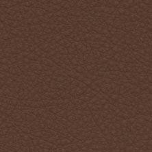 Cognac-31322