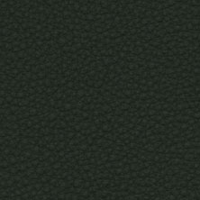 Green-31327