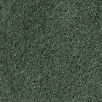 Alcantara Lichen